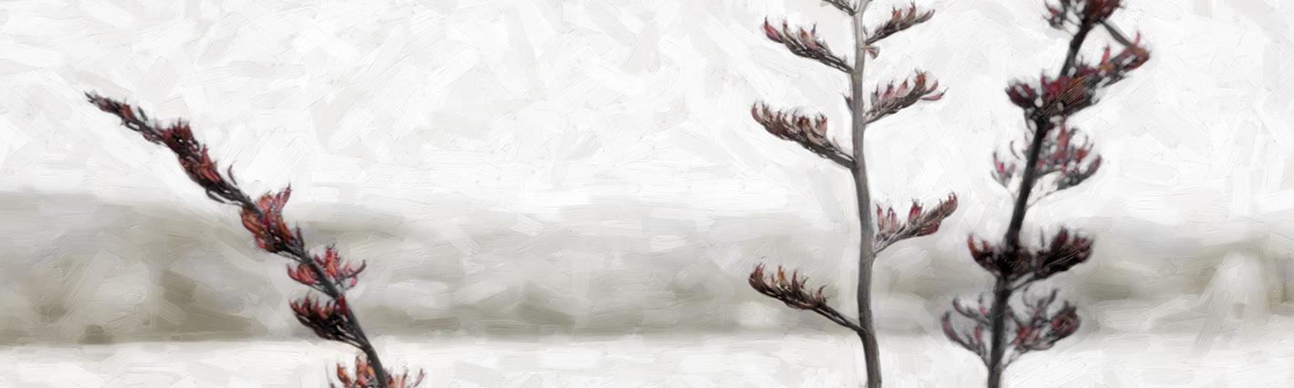'MINIMALIST FLAX' SEPIA (digital painting) printed image on glass splashback