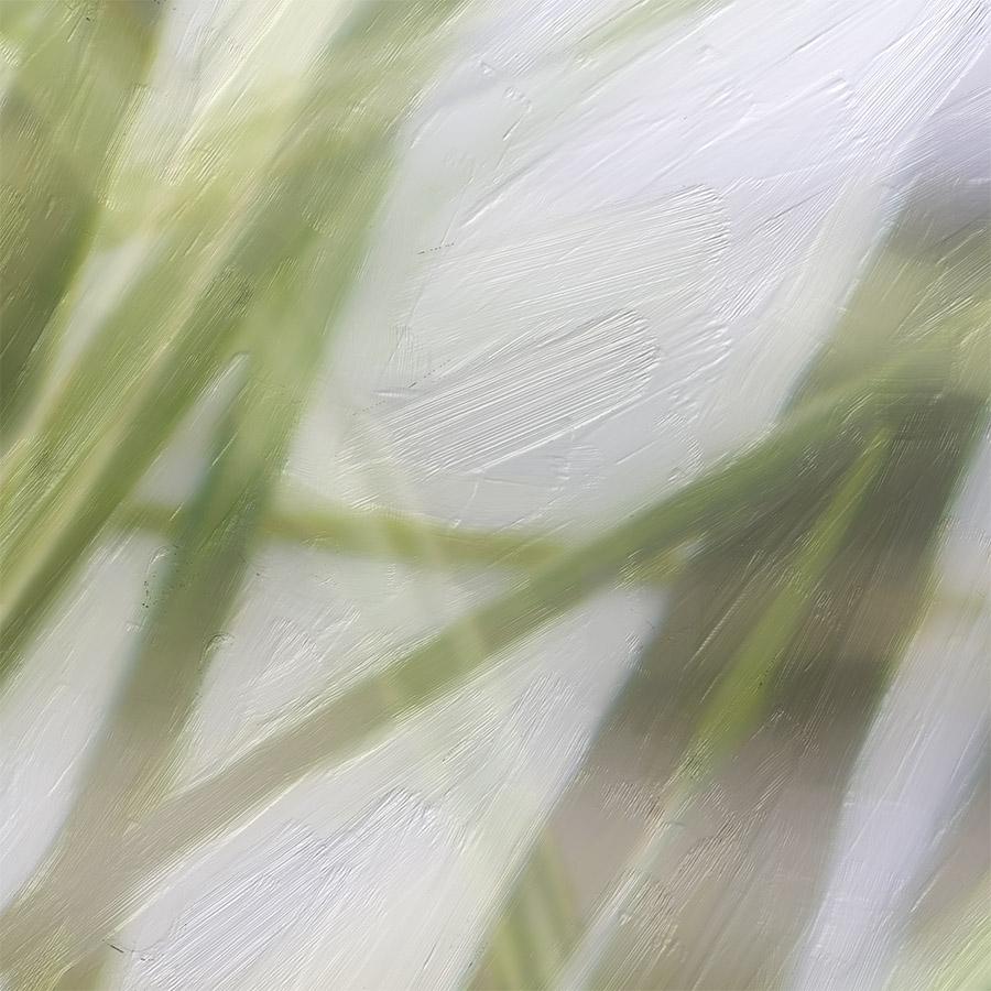 'PAINTED SAND DUNES' (colour digital painting) printed image splashback - detail