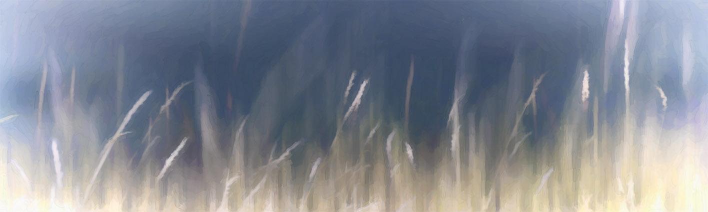 COLBLUR-5 Summer Haze C (digital watercolour painting)