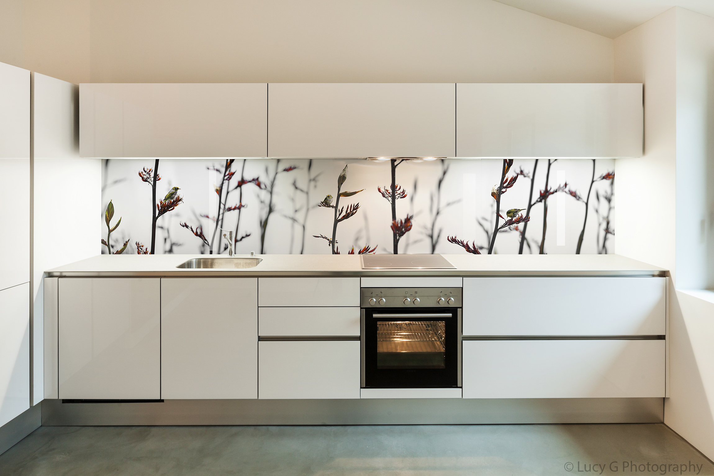 Printed image on glass kitchen splashback  - Perth,  Australia - 'Silvereye on Flax'