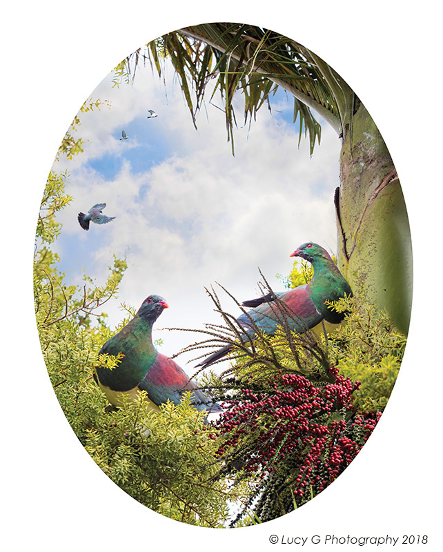 Birds of a Feather (Oval) 600x750mm