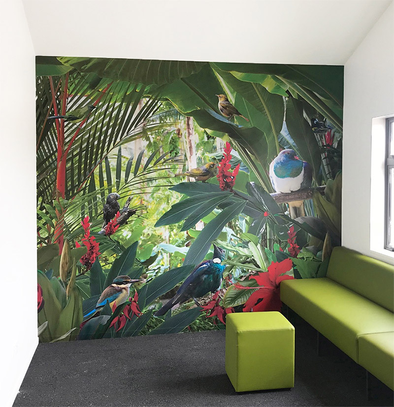 TROPICAL NZ BIRDS - wallpaper mural  -  2.5m high x 2.8m wide- Price range - $1400 to $1500 + gst (depends on location of install and complexity).-This medical centre wanted a feature for their kids waiting area and this wall mural really created that WOW factor.