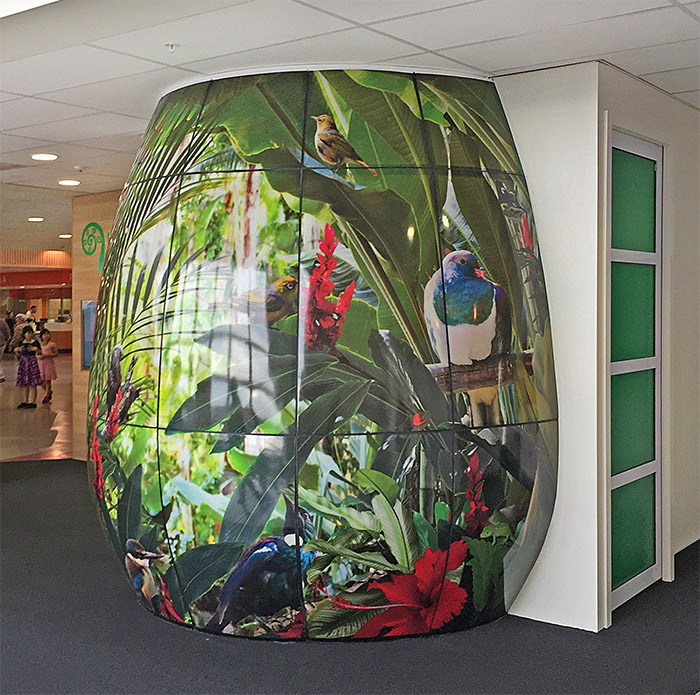 WAIKATO DHB - acrylic artwork  -  -4.7x3.0- Price range - POA- I was lucky enough to be asked to collaborate with the Waikato DHB on their new Hauora ihub fitout.  I created this NZ bird wall mural and it was printed onto vinyl and thermo-formed onto large curved acrylic panels that created a pod and the wall to a meeting room.