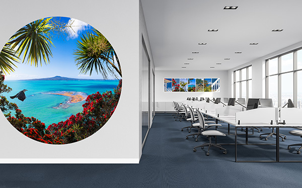 RANGITOTO- vinyl wall dot - - This office features a large 2m diameter printed circular wall vinyl dot that creates a feature in a circulation space.  Artwork - ''Rangitoto Reef.''