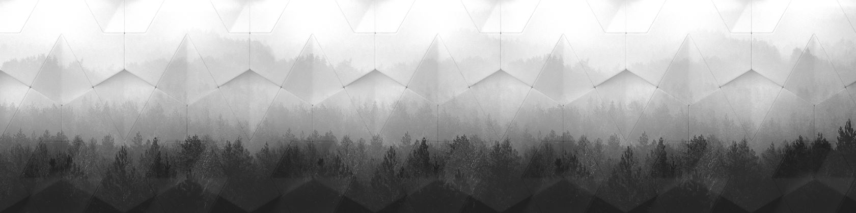 ARCH 2019-2a Geometric Pines BW