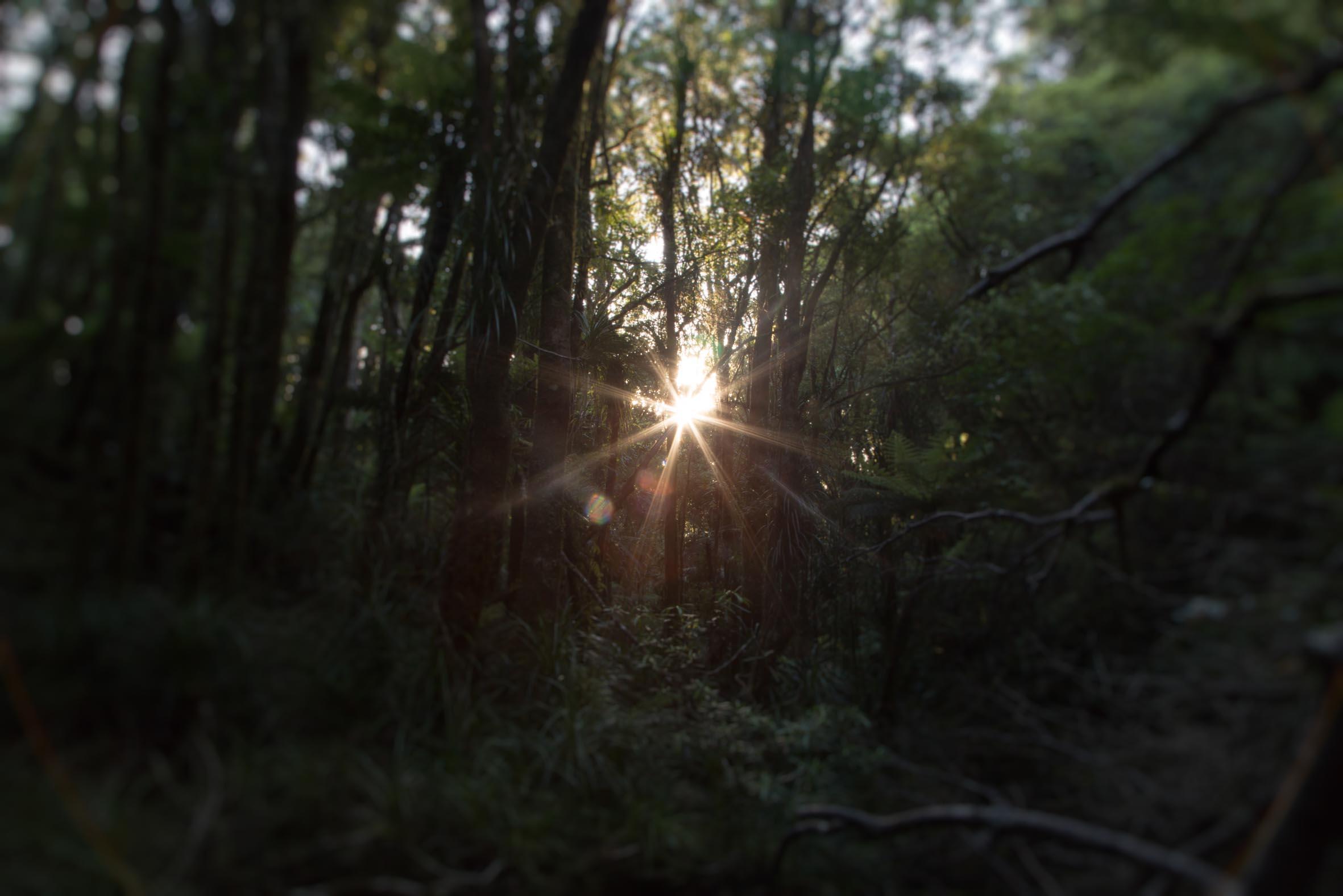 Hike-13.jpg