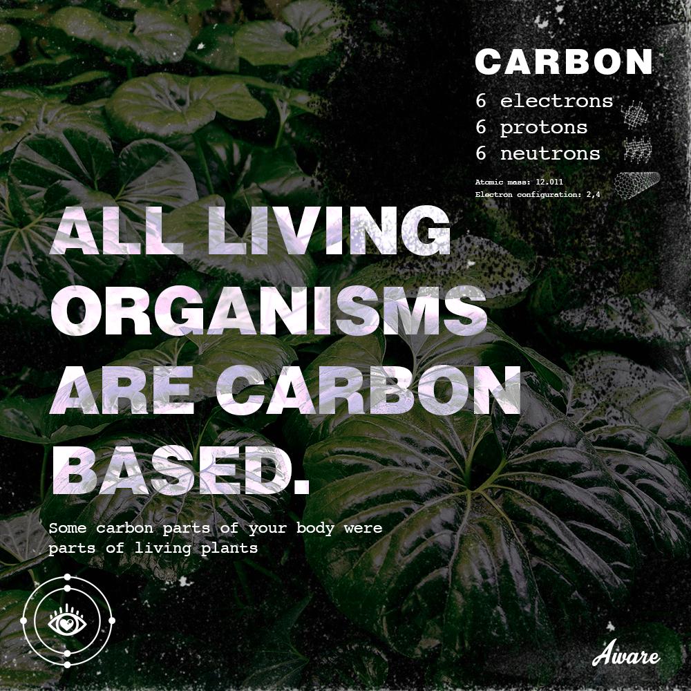 carbon-ig-posts2.png