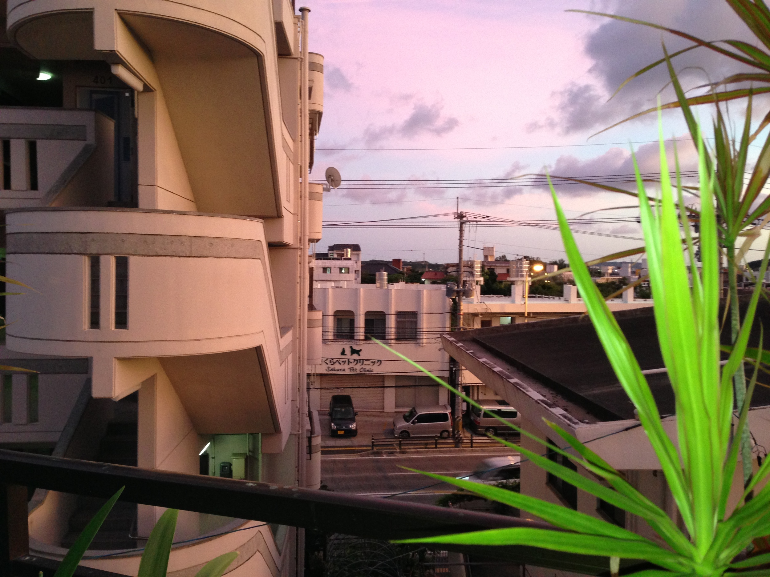 A sunset view from our balcony
