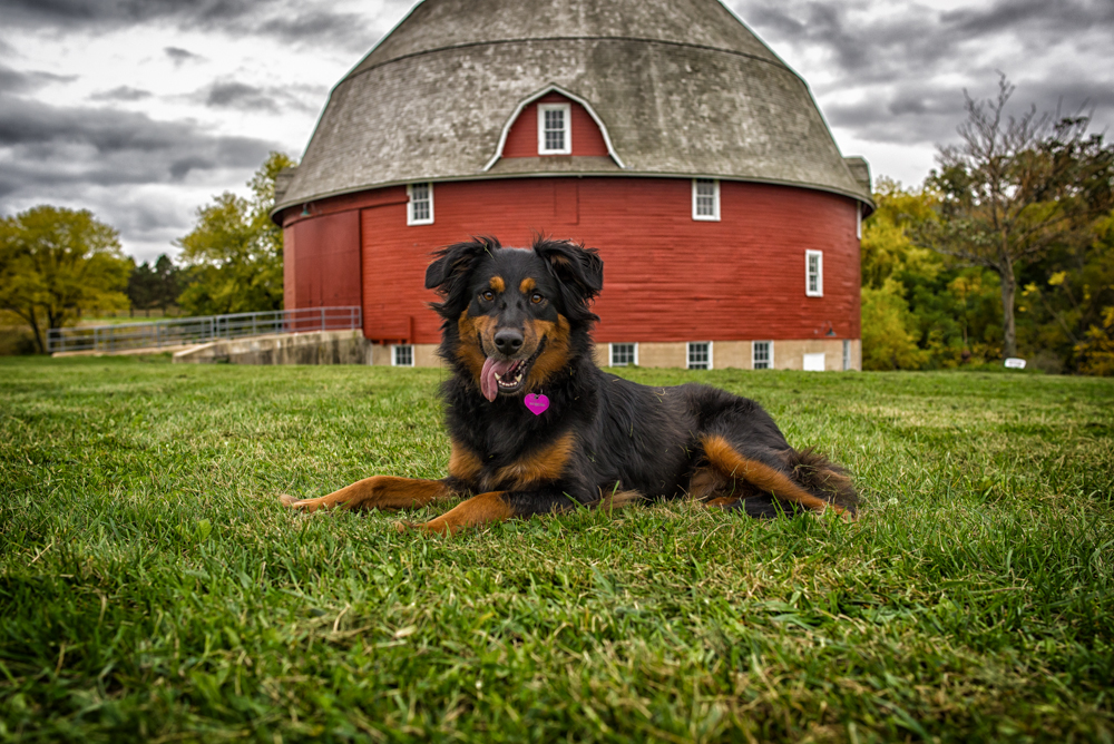 Keely at the round barn at Saulk Trail.