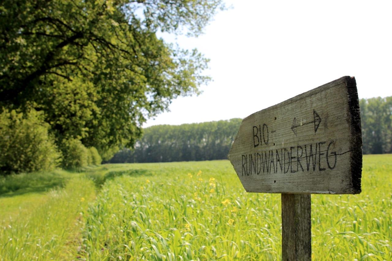 Hof_Eggers_Wanderweg_susies.jpg
