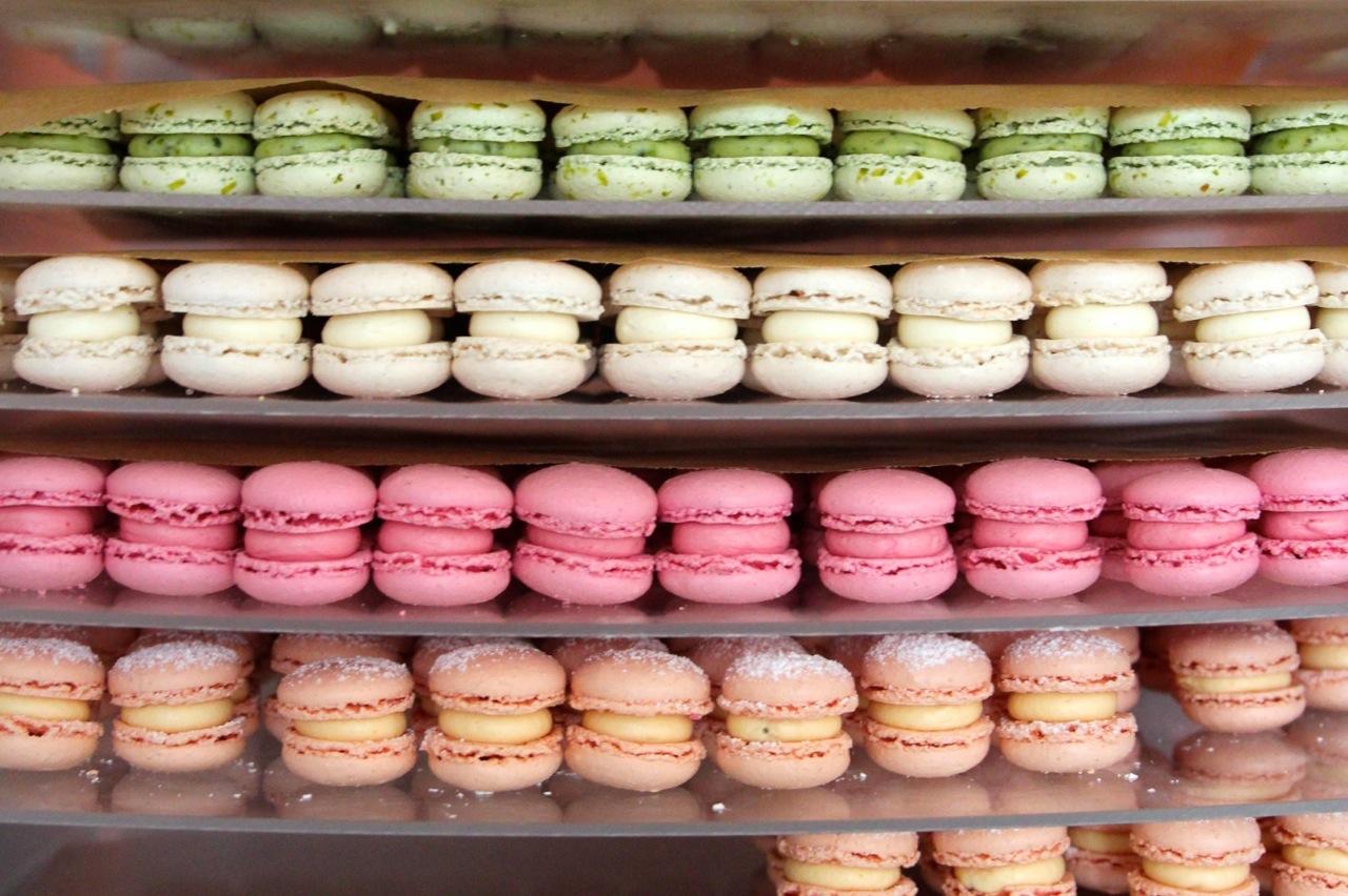 Jö_Shop_susies.jpg