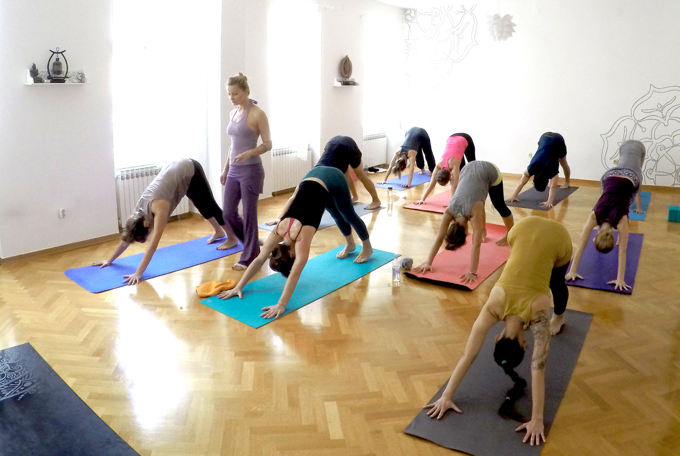 sangha yoga teacher training