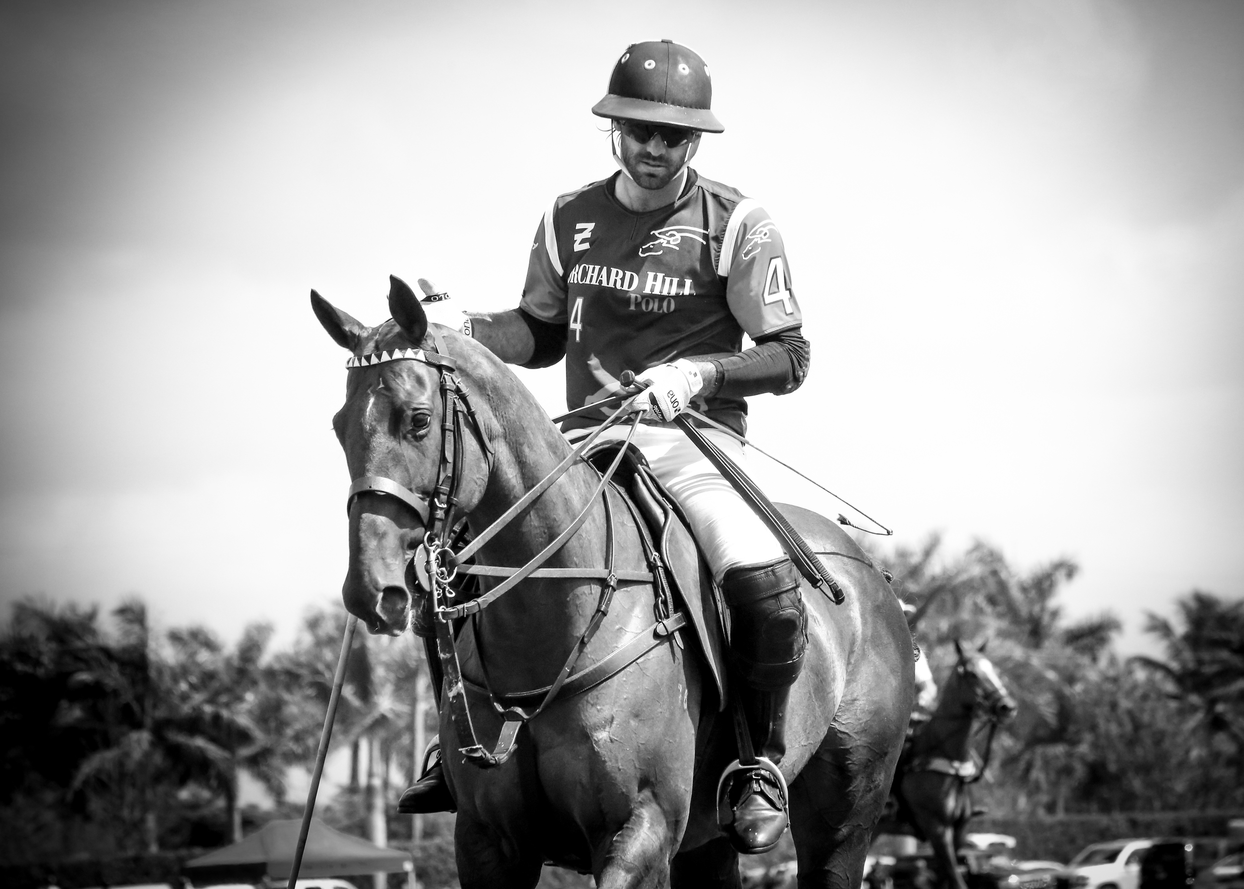 Facundo Pieres for Orchard Hill