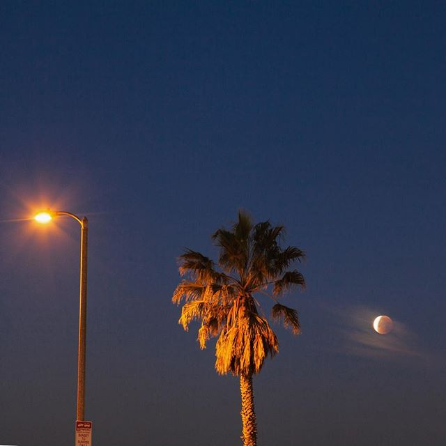 Earlier  #losangeles #bloodmoon #supermoon #lunareclipse