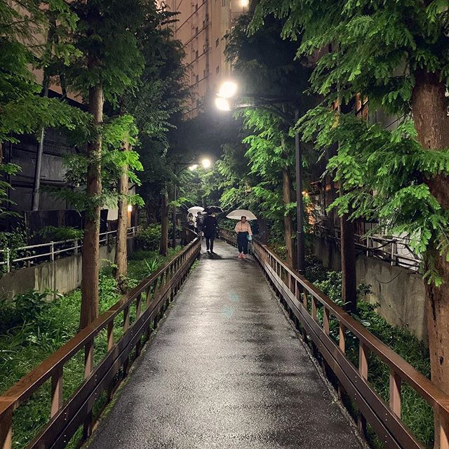 Concrete jungle. #tokyo #japan #travel #centered