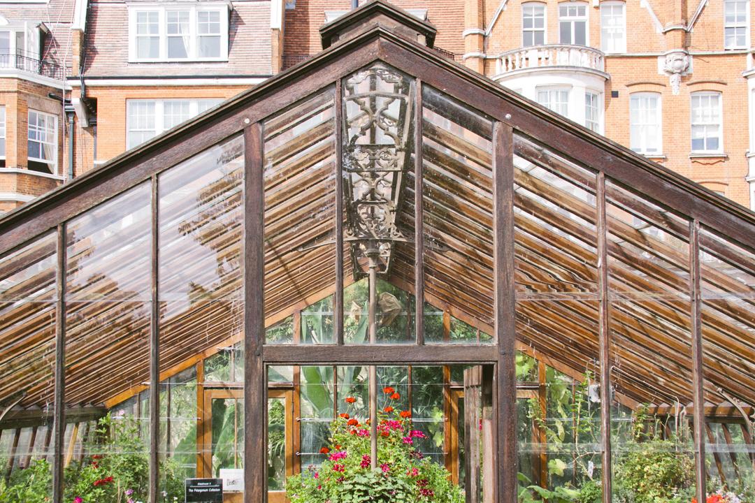 Print Club Ltd. visits the Chelsea Physic Garden