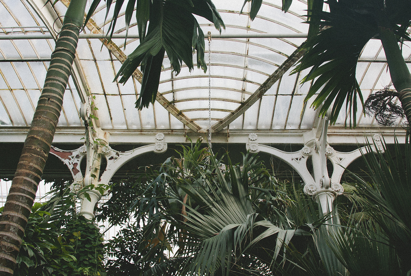 Kew Gardens Palm House from the Print Club ltd. Journal