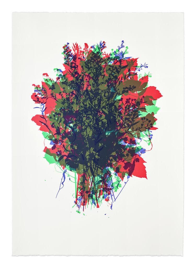 Jennifer Schmidt , Flowers Grow, Weeds Grow ( 2 of 2 ) - 2018  .  Screenprint, Edition of 5
