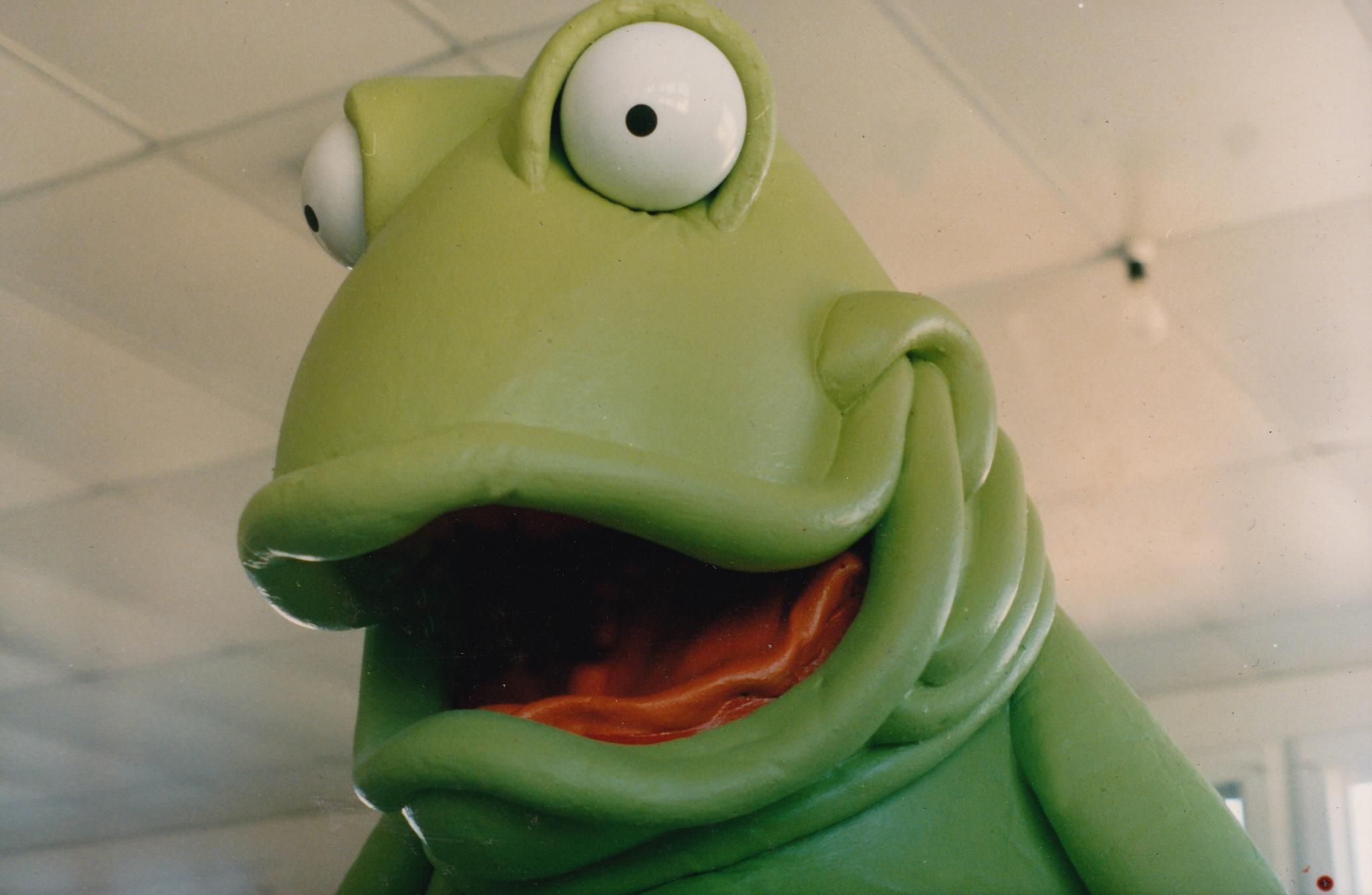 Robert D Frog