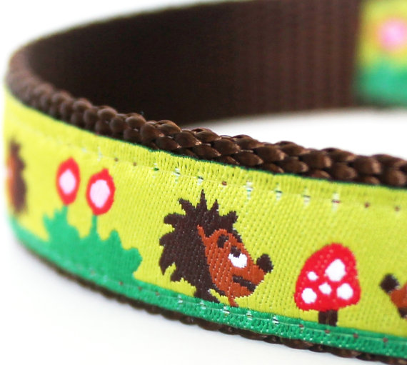 Hedgehog Dog Collar