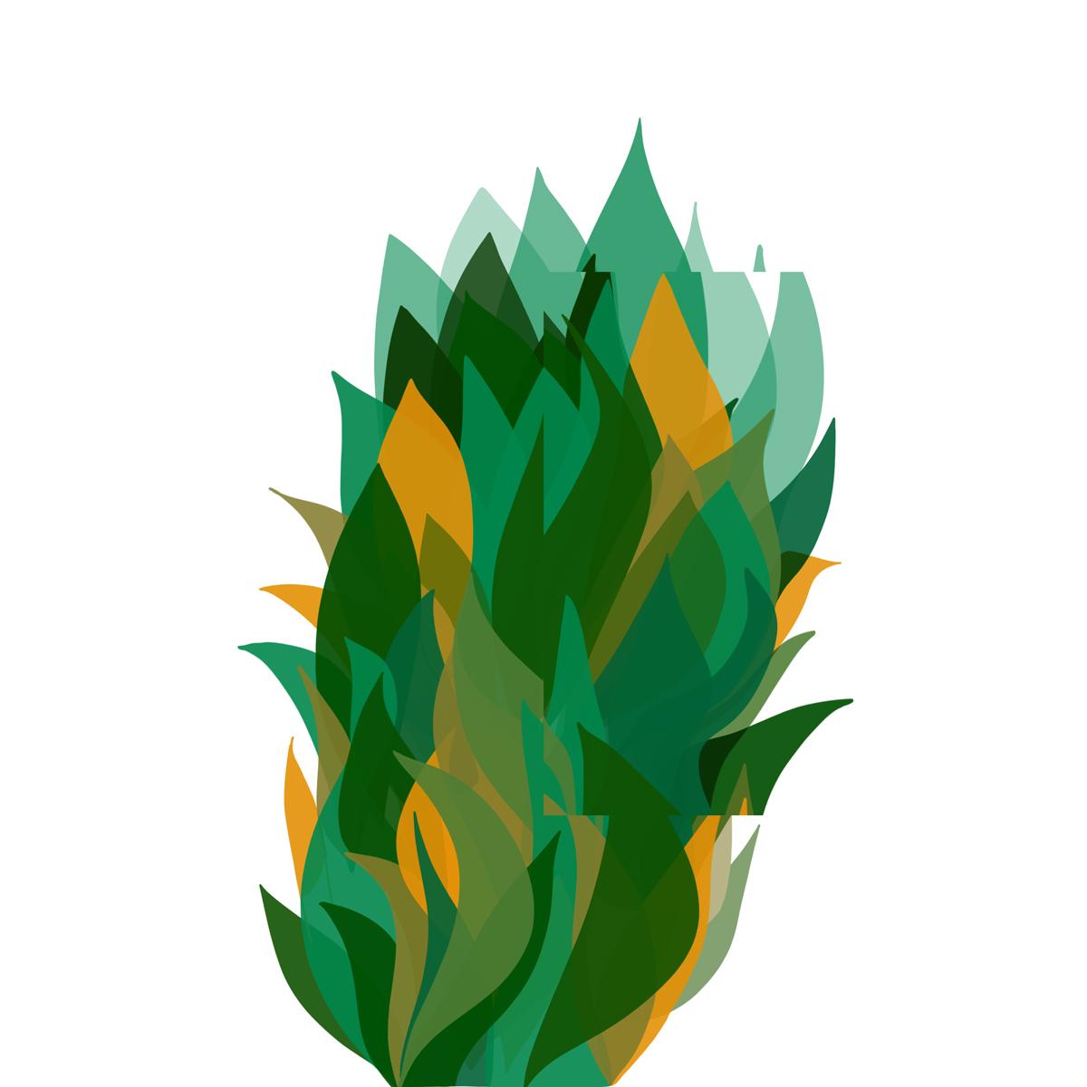 plantfire.jpg