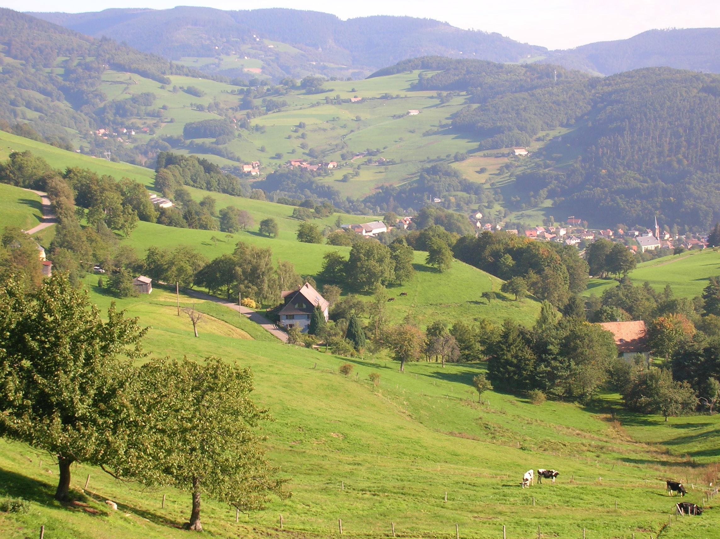 Alsace in September