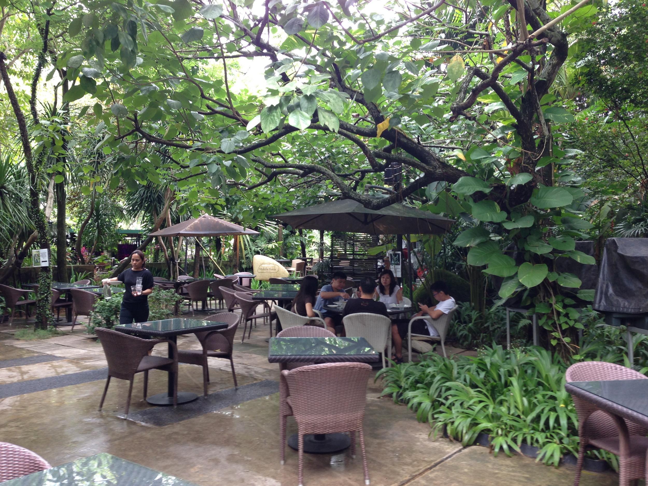 the canopy (4).jpg