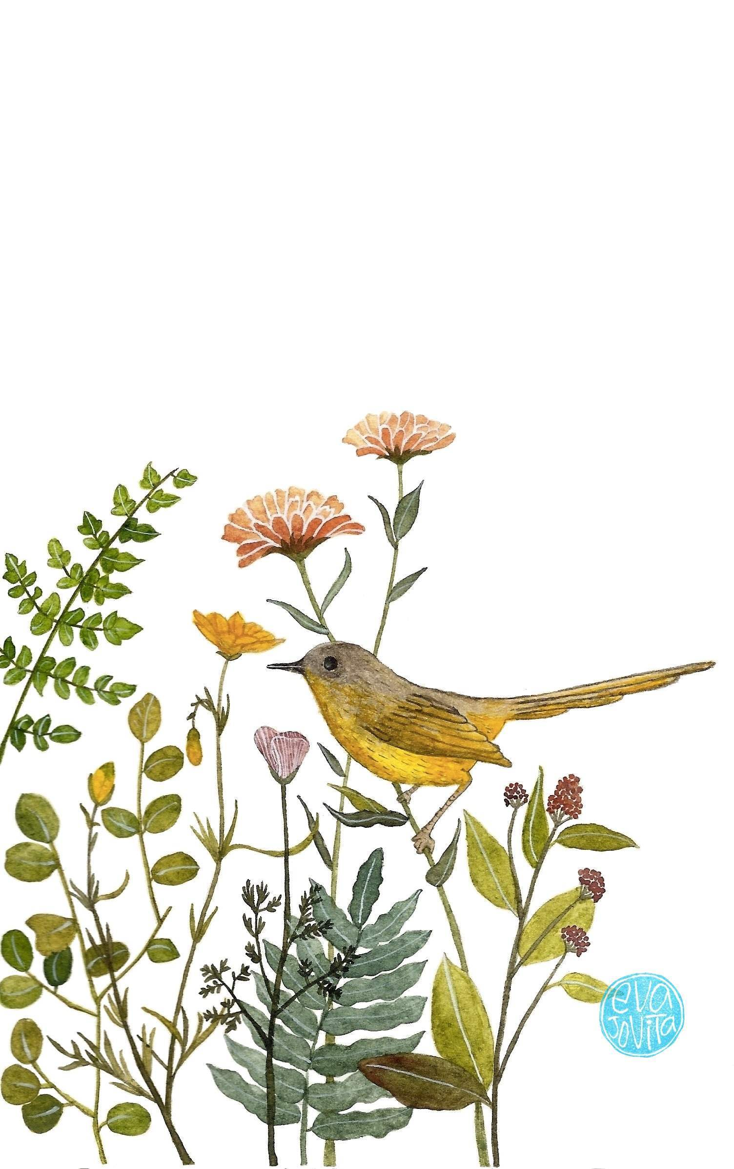 bird and flower.jpg