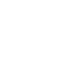 The Salvation Army logo white