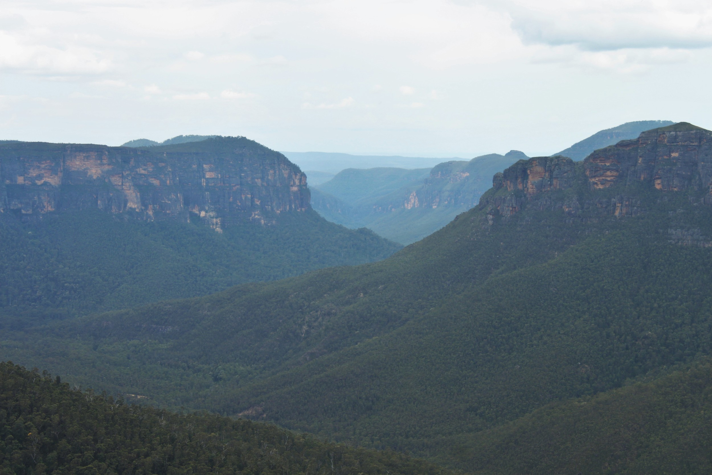 Blue Mountain National Park-- just 70 miles west of Sydney.