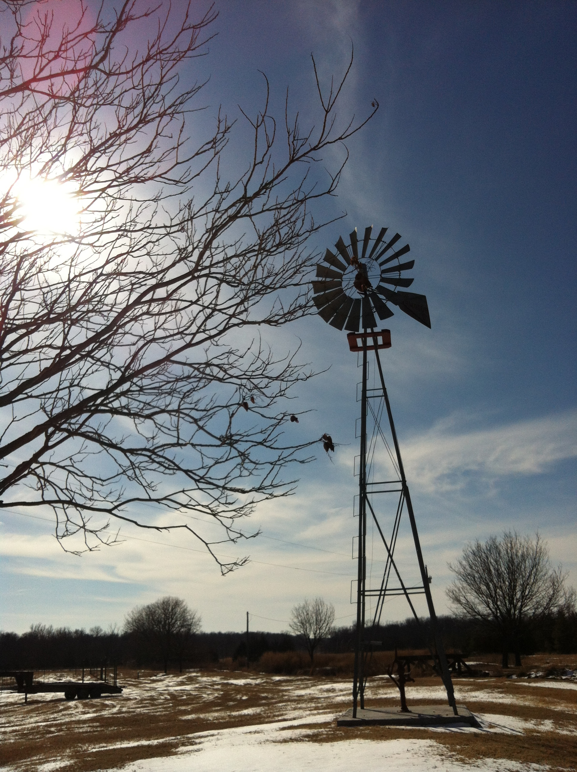 Windmill, Springhill Farms