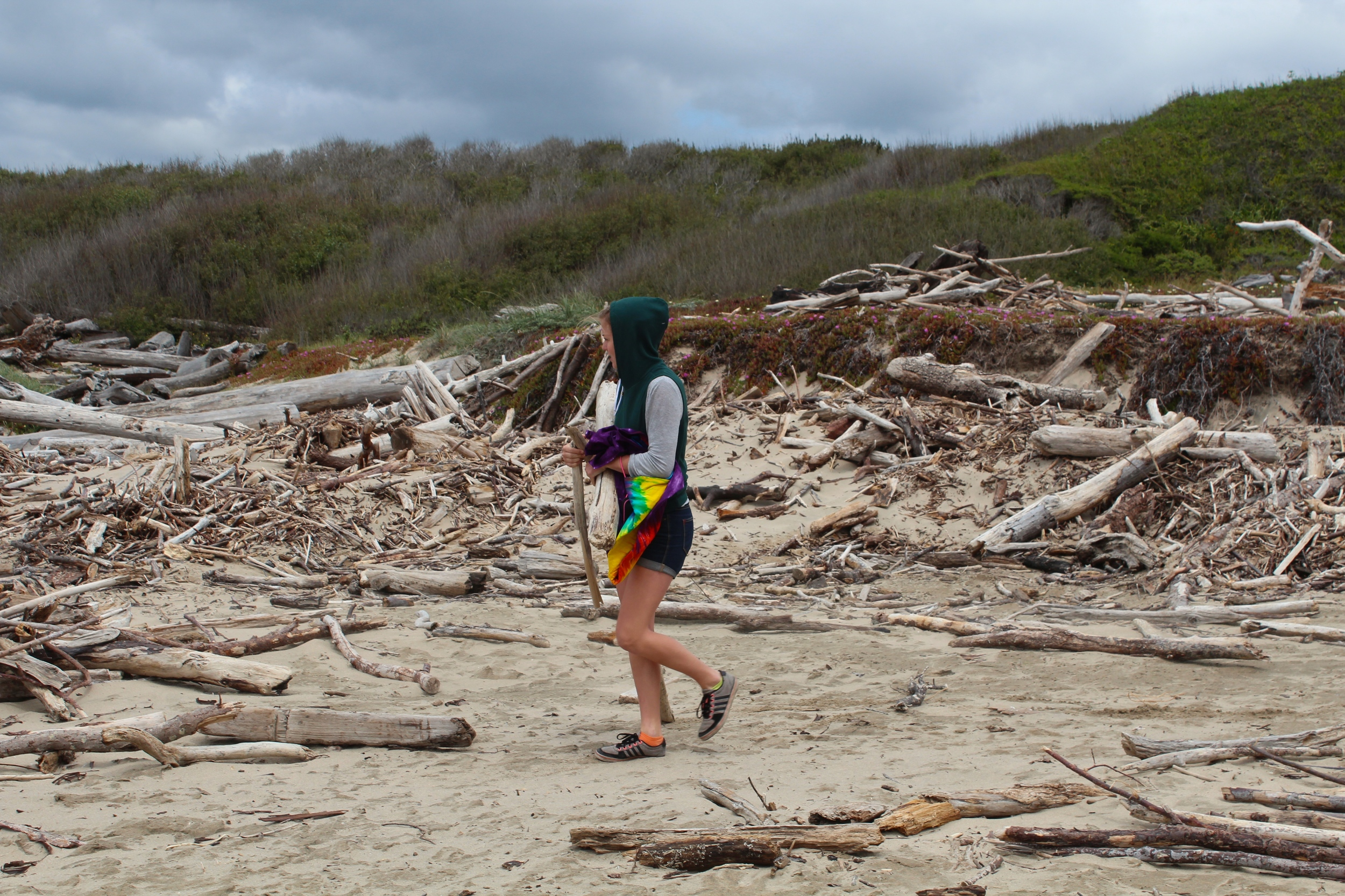 Collecting driftwood.