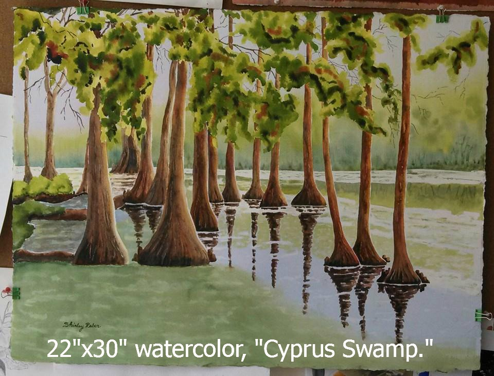 Shirley's cypress swamp.jpg