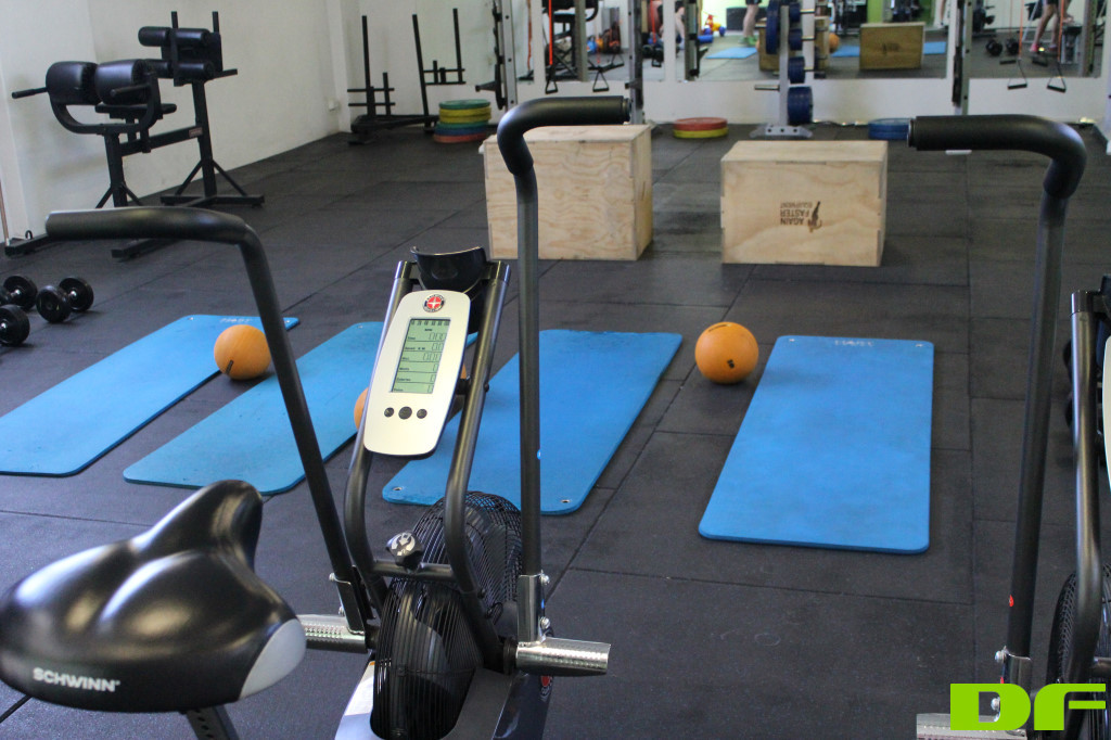 Drive-Fitness-Personal-Trainer-Workout-Brisbane-4.jpg