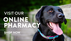 Click Image to Visit  Our Online Pharmacy! -