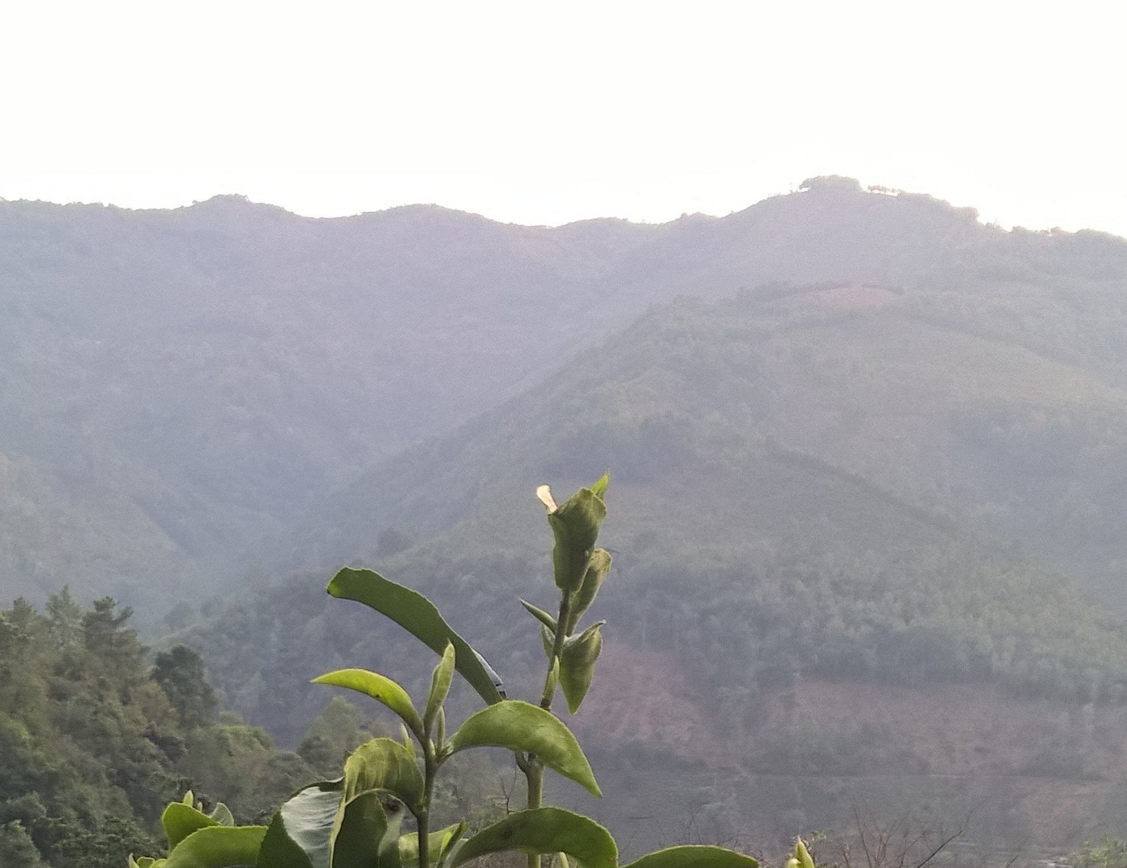 Our Trip to Yunnan, China