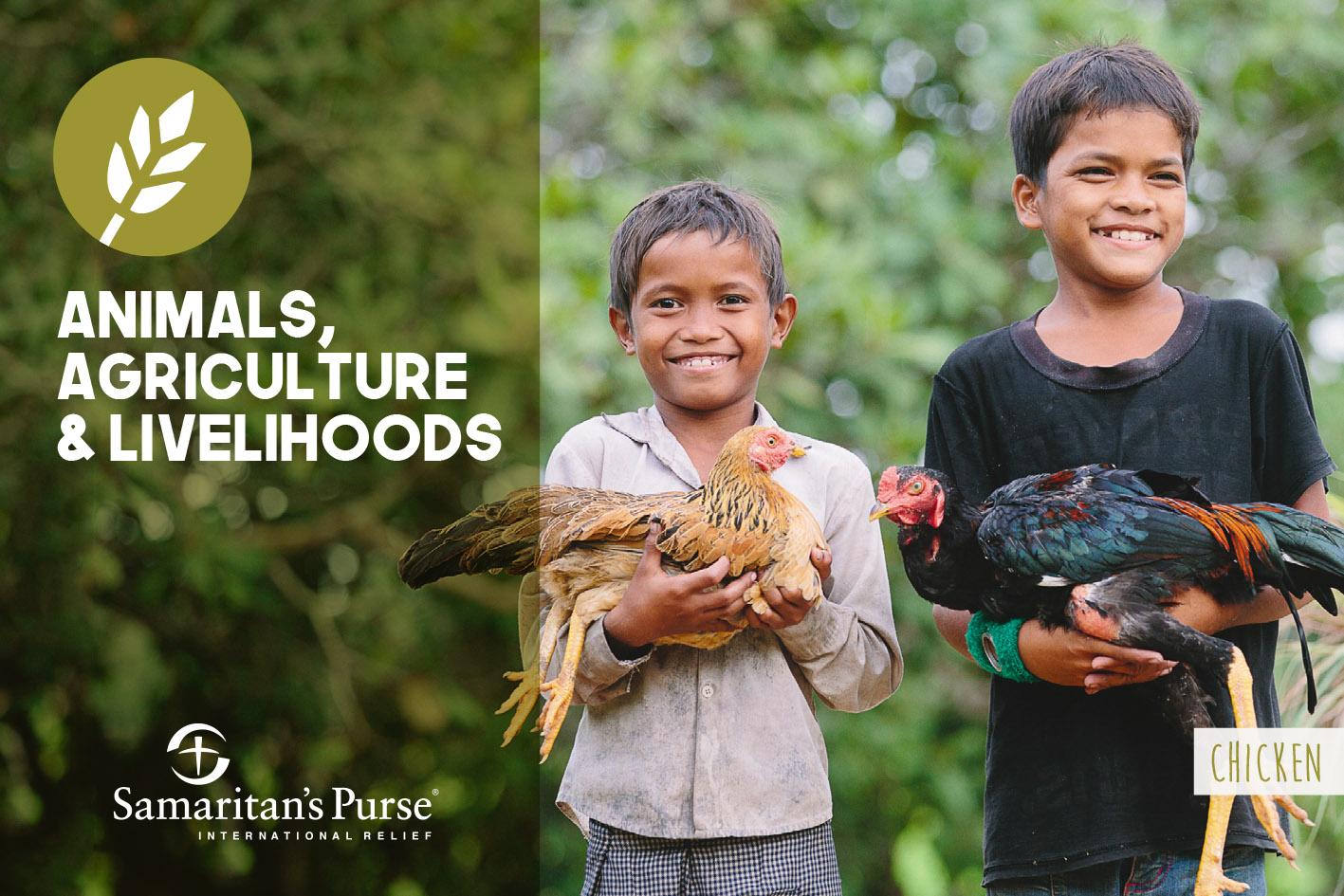 Gift Catalogue Postcards - Samaritan's Purse AU/NZ