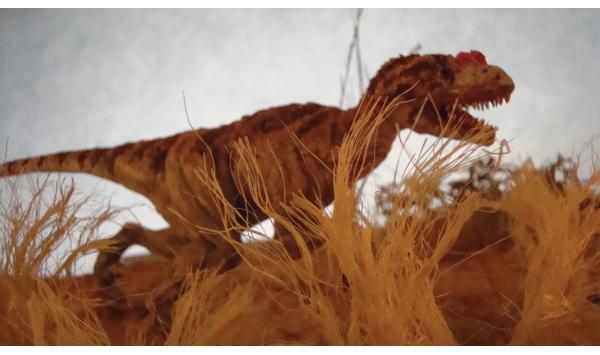 Jesse Farrell - Chicken for Dinner- Jesse Farrell (2).JPG