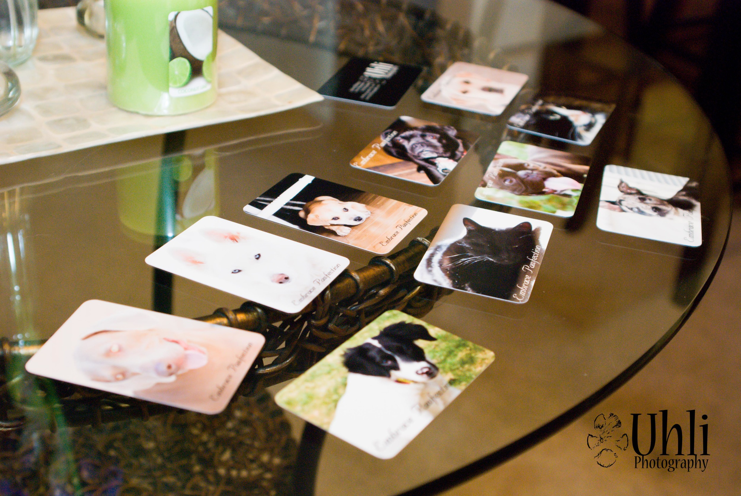 6.7.13 - New Uhli Photography Business cards. Very excited!