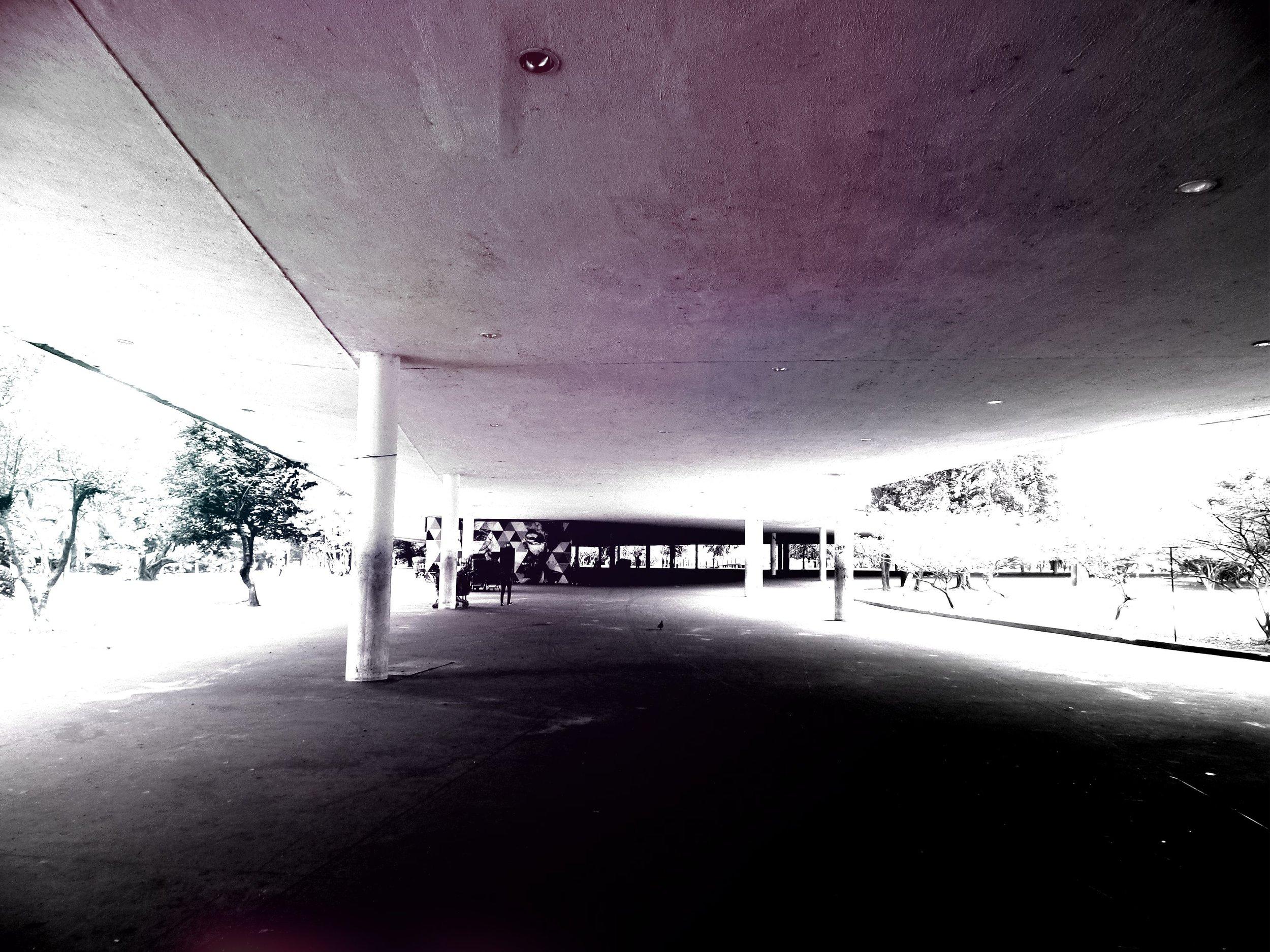 SAM_2911.jpg