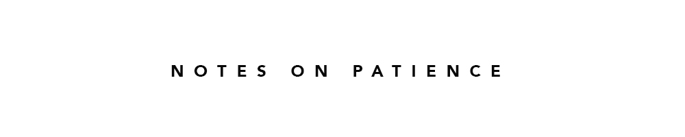 NOTES-ON-PATIENCE2.jpg
