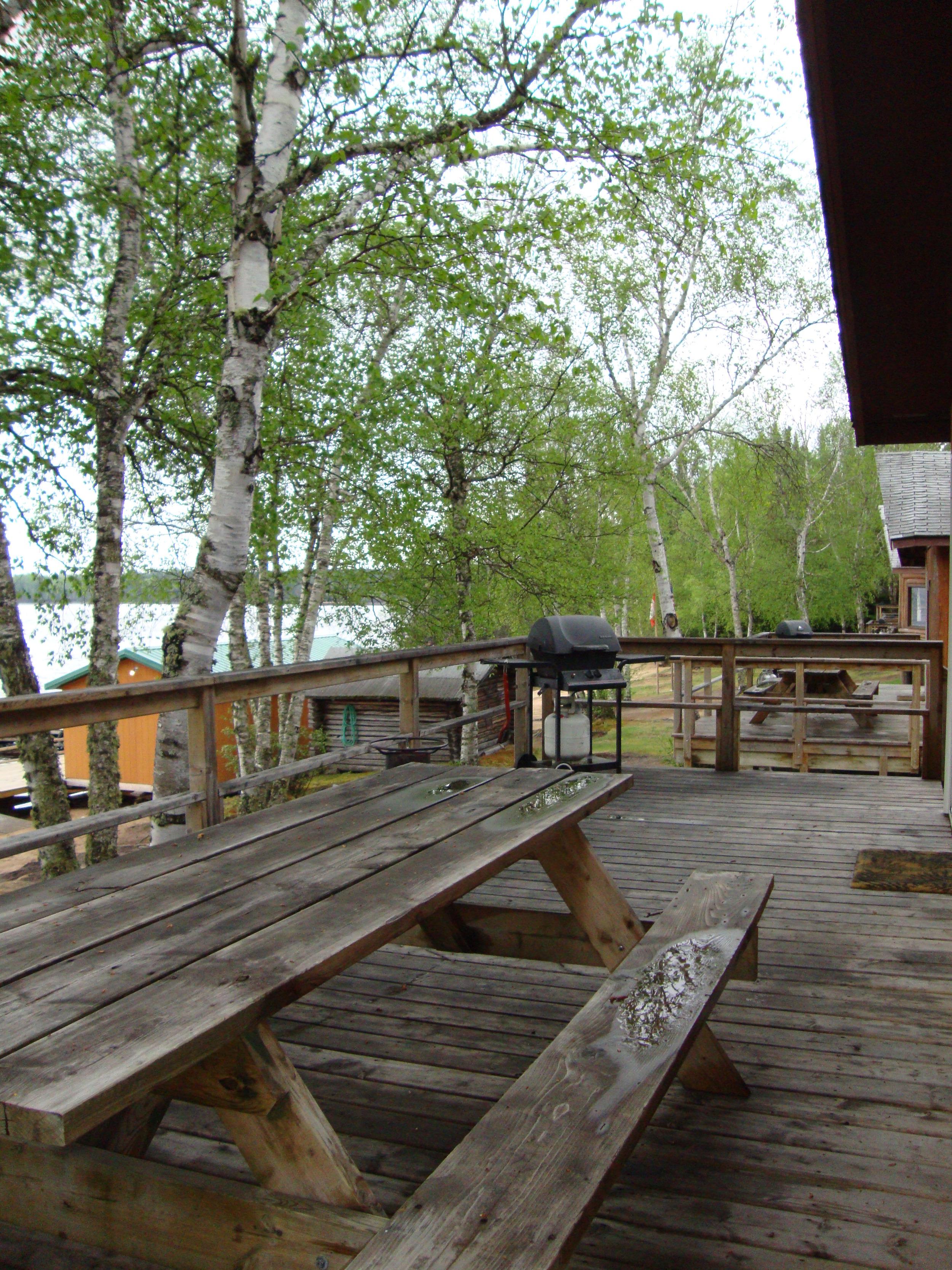 Cabin 1-3 Deck.jpg