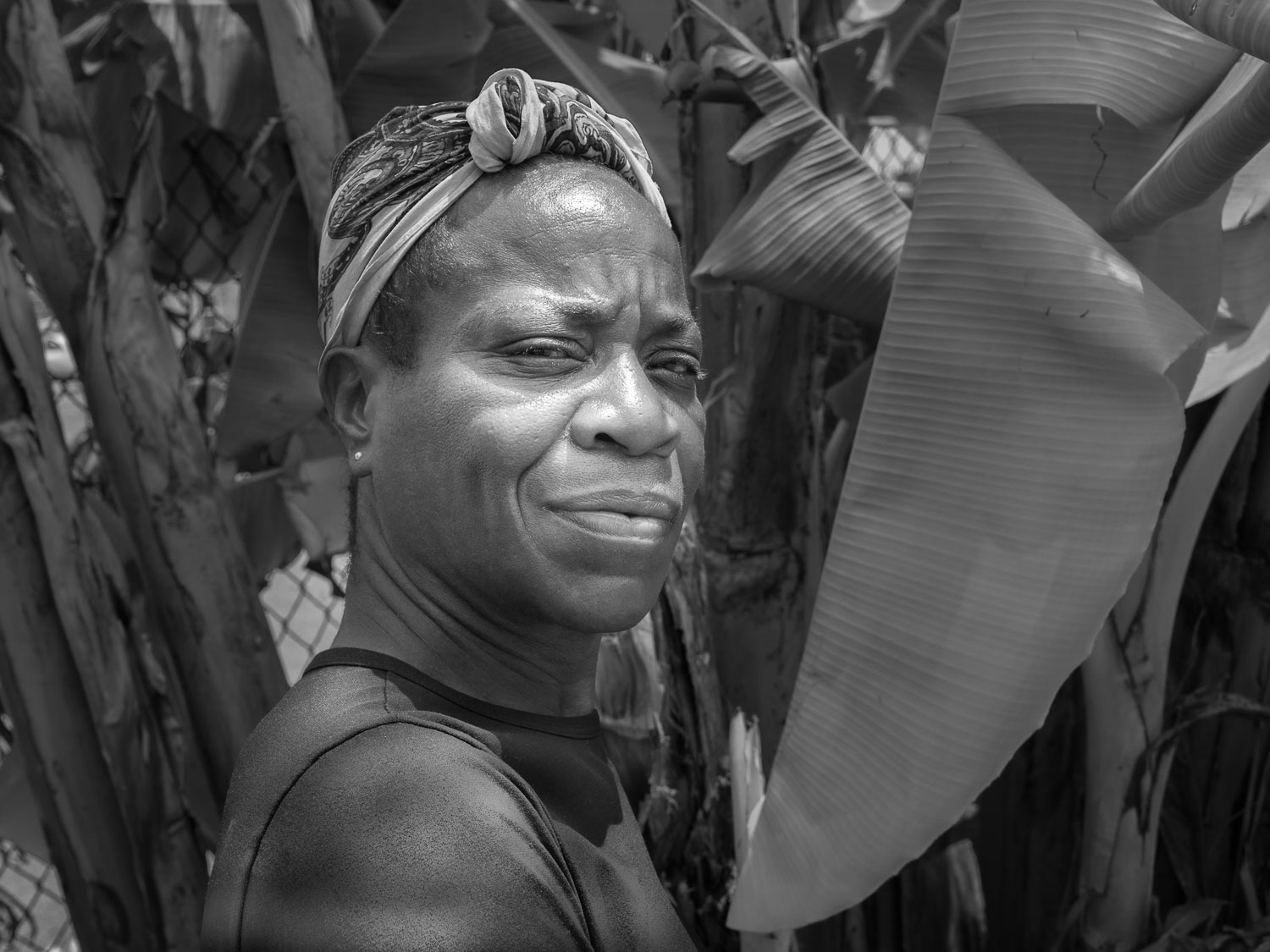 Tasha next to the banana trees that give some shade to the sidewalk on Filbert Street.