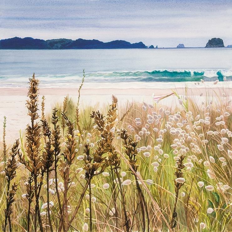 Soft Light - Cooks Beach.jpg