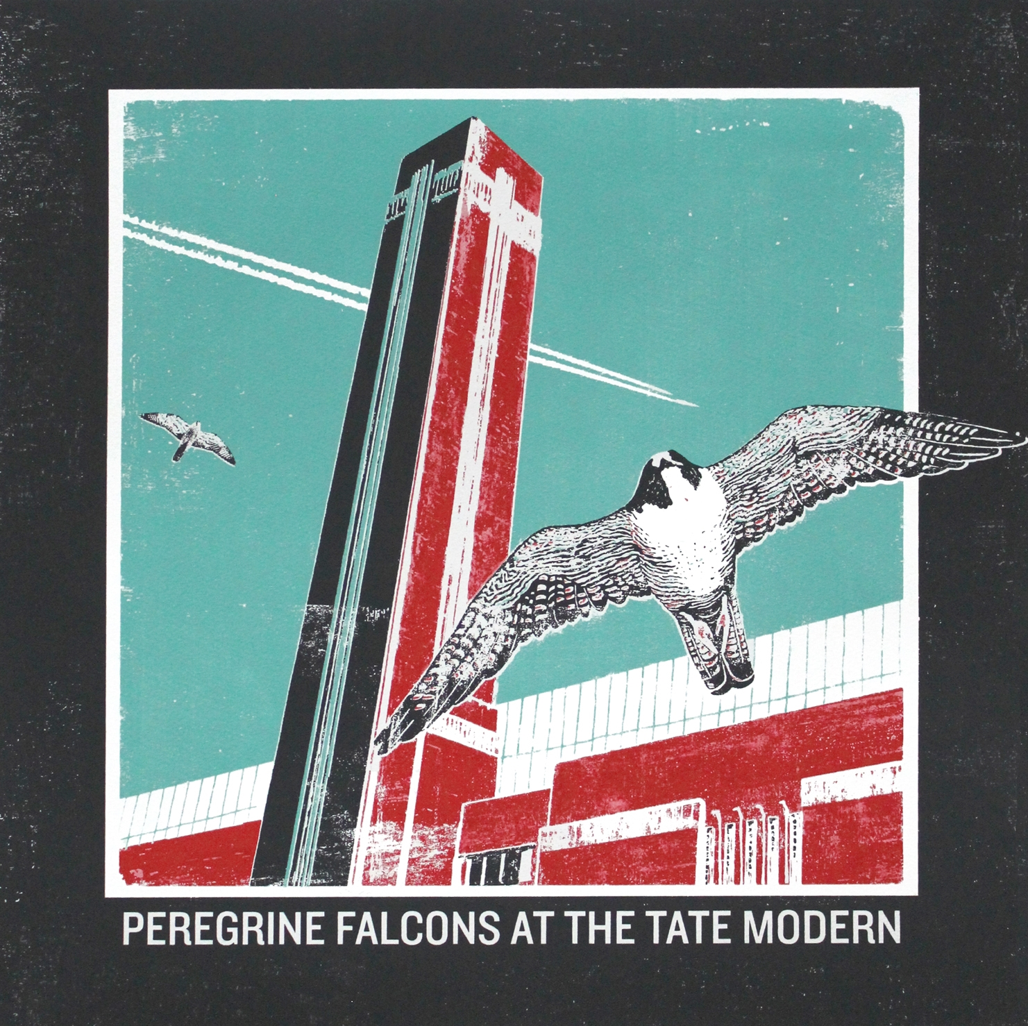 Peregrine Falcons at the Tate Modern.