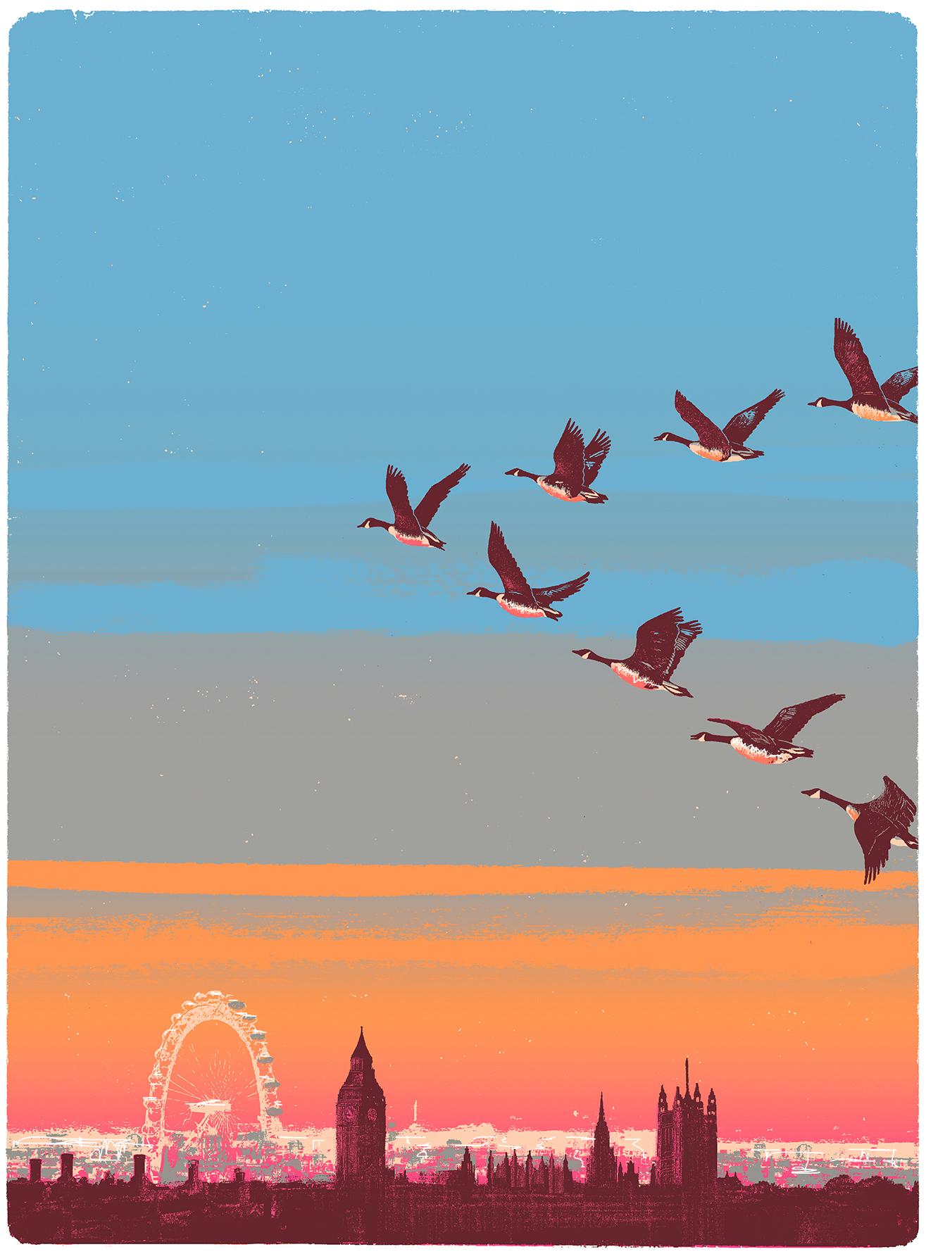 Migration Over Westminster.