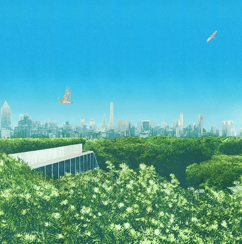 Central Park Treetops _ Paper65x65cm_1000px.jpg