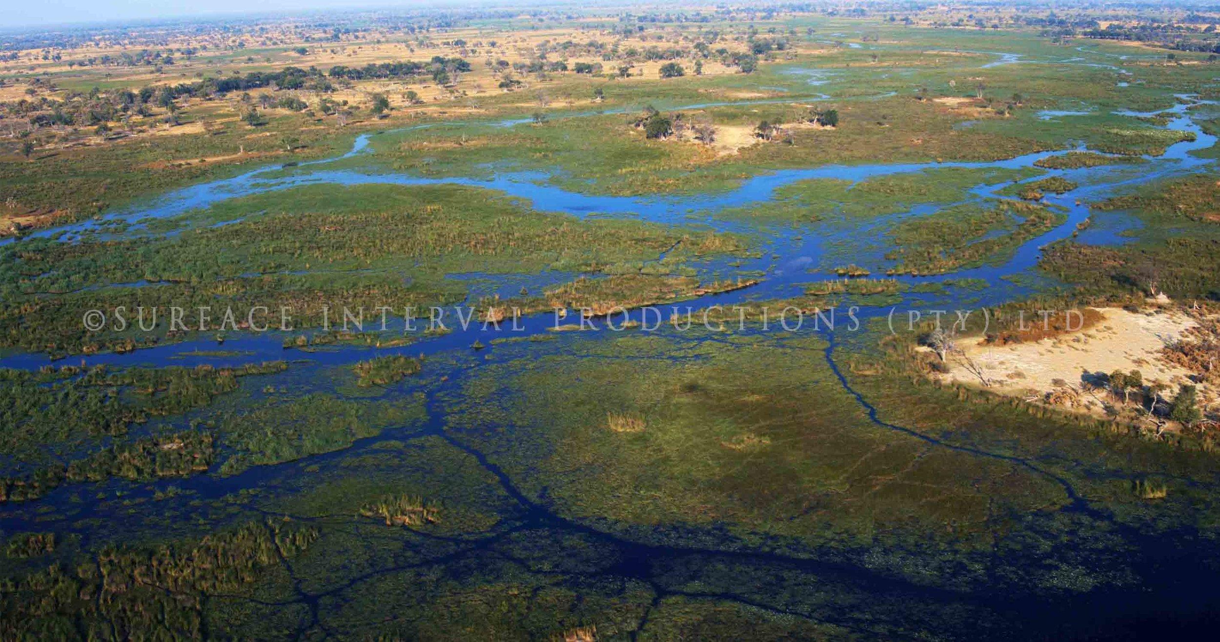 Okavango Delta 002ss.jpg