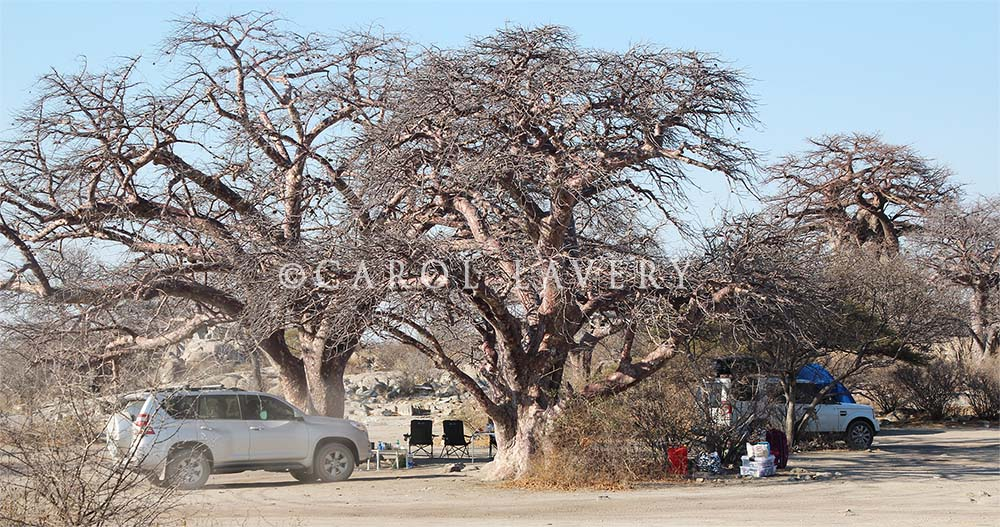 Lekhubu camp site.jpg