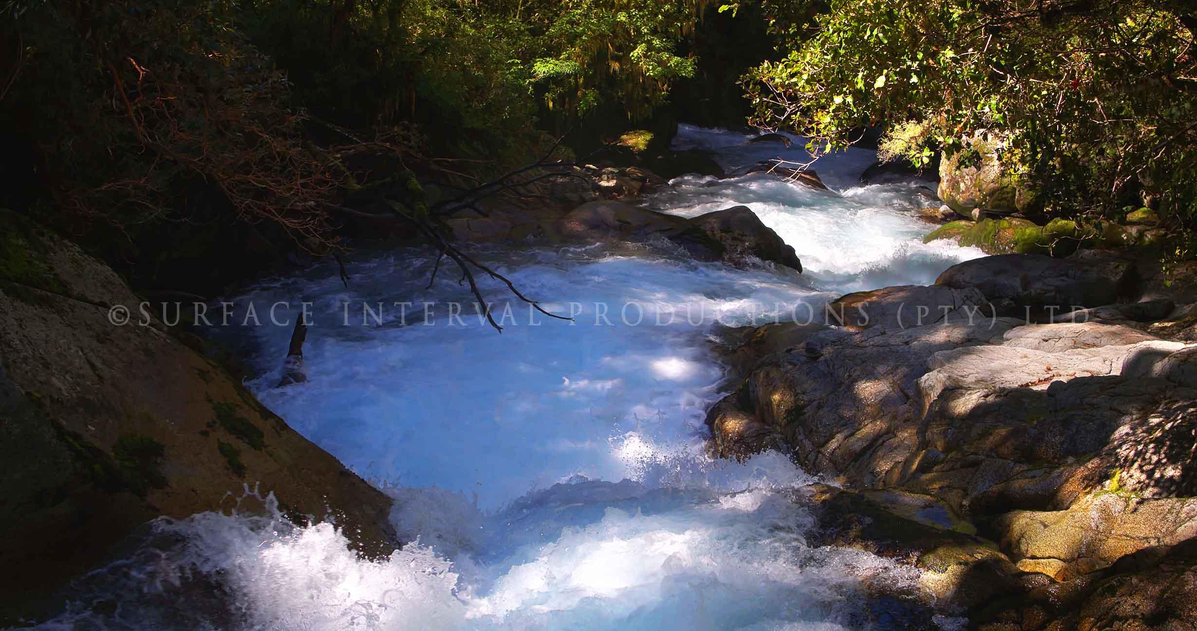 Fiordland 11.jpg